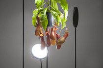 viride-lighting-by-goula-figuera-studio_04