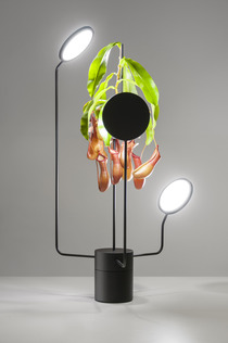 viride-lighting-by-goula-figuera-studio_06