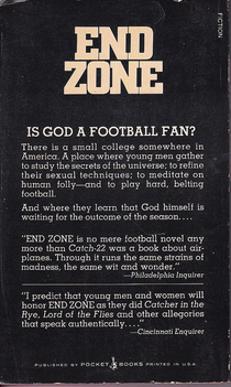 end zone don delillo essay Discussion of themes and motifs in don delillo's end zone enotes critical analyses help you gain a deeper understanding of end zone so you can excel on your essay.